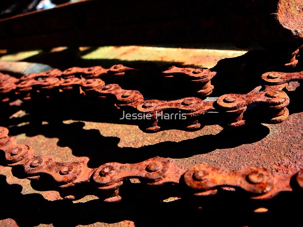Chain by Jessie Harris