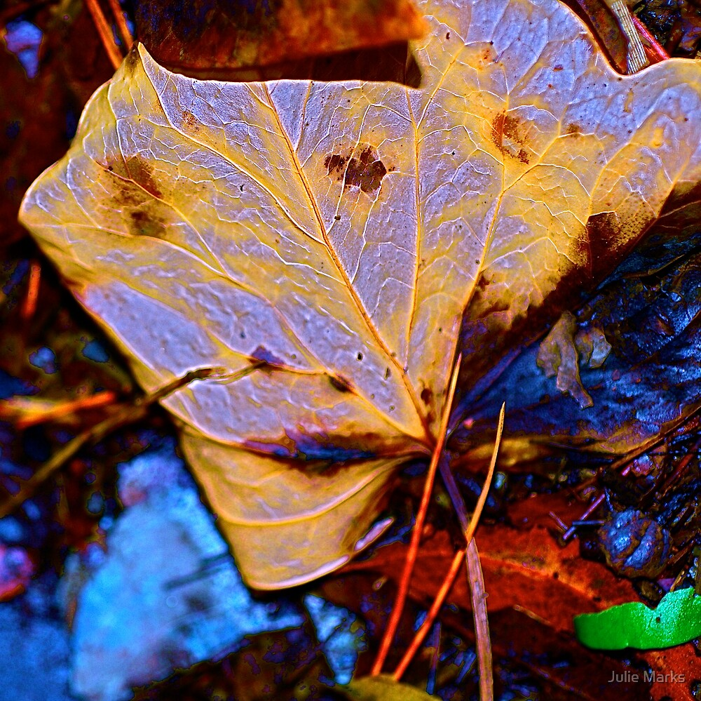 Leaf Tribe by Julie Marks