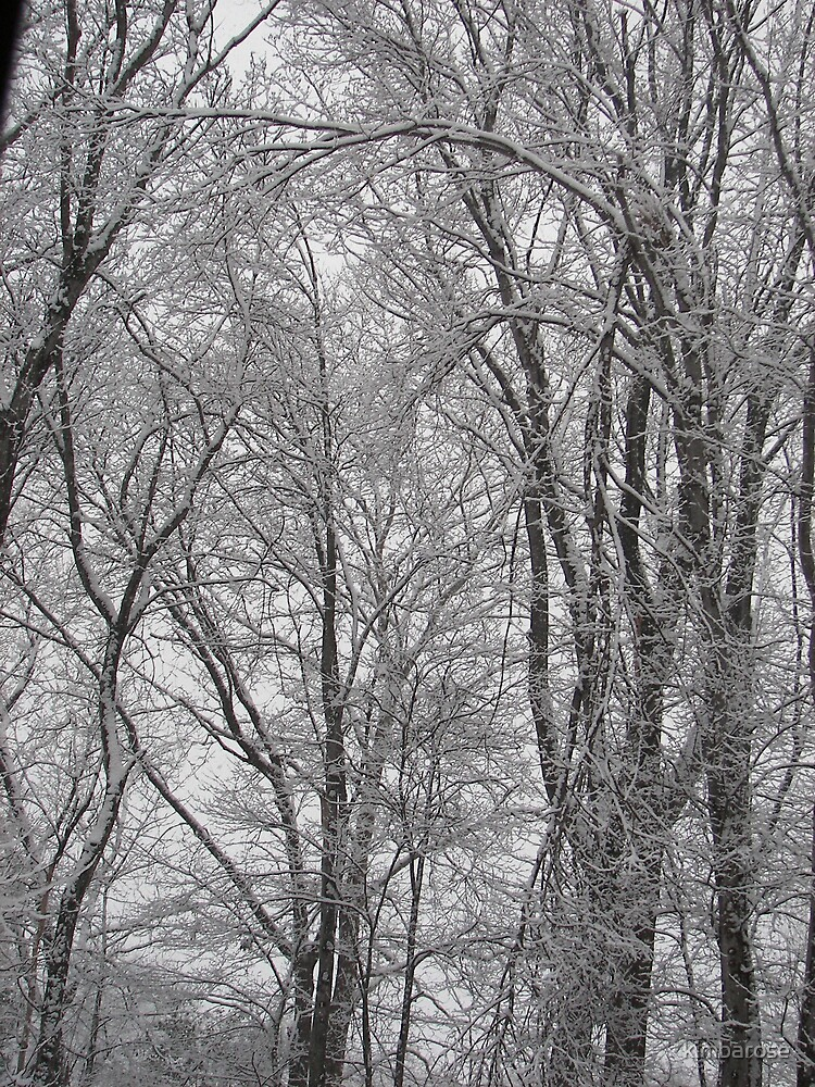 Snowy Afternoon by kimbarose