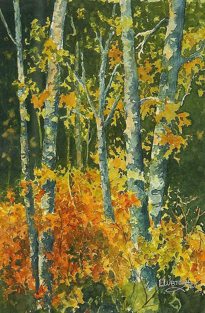 Autumn Woodland by Lynne Wright