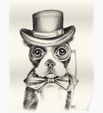 Boston Terrier Gentleman Poster