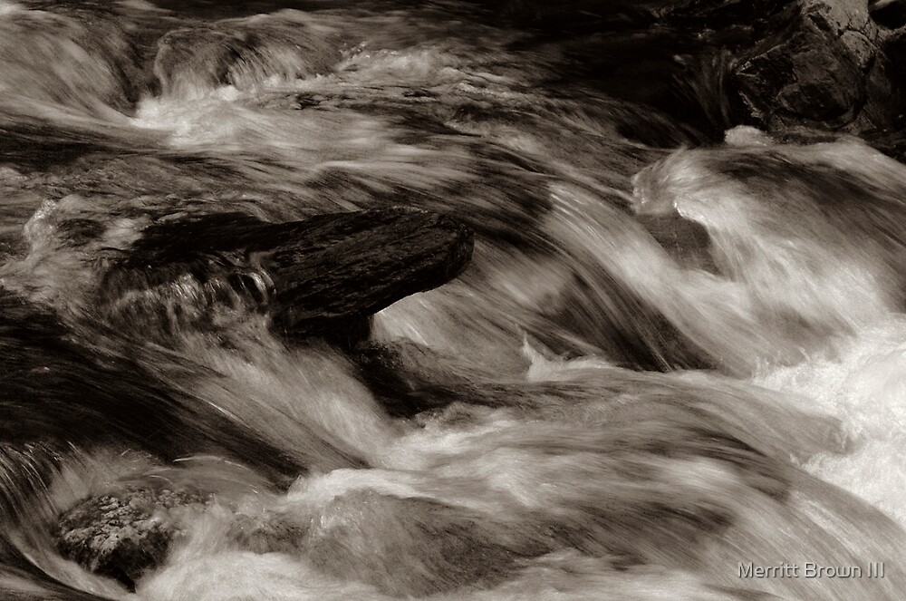Small stream #1 by Merritt Brown III