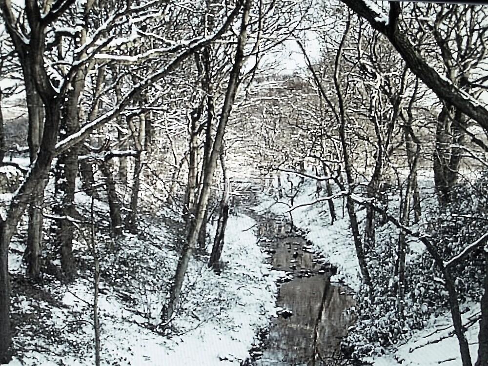 winter bw by dizz37