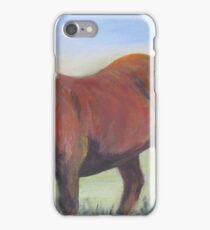 The Shetlander iPhone Case/Skin