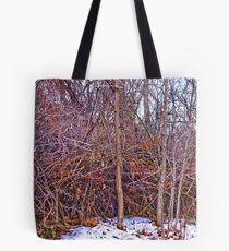 Winter Walk #4 Tote Bag
