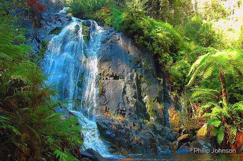 Quot Stephenson Falls Marysville Yarra Ranges National Park