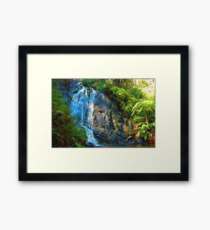Stephenson Falls- Marysville , Yarra Ranges National Park Victoria Australia Framed Print