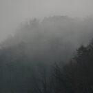 Smoky Mountain Mist by Linda Eades Blackburn