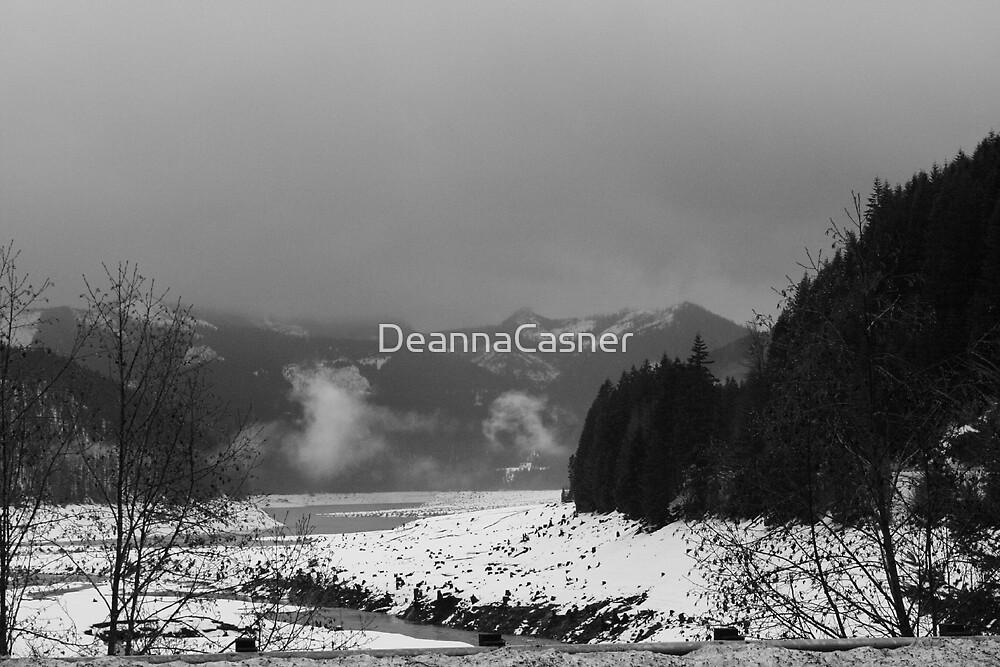 Detriot Lake by DeannaCasner