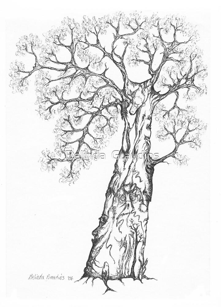 Wise Owl Tree by Belinda  Graudins