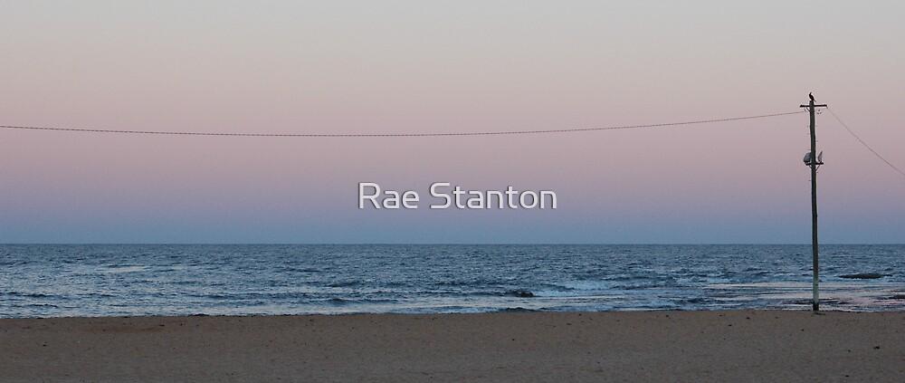 bird on a pole by Rae Stanton