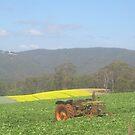 Tractor no More by Rob Watt