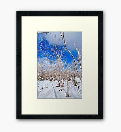 Aussie Snowscape  Victorian Alps National Park ,Victoria Australia Framed Print