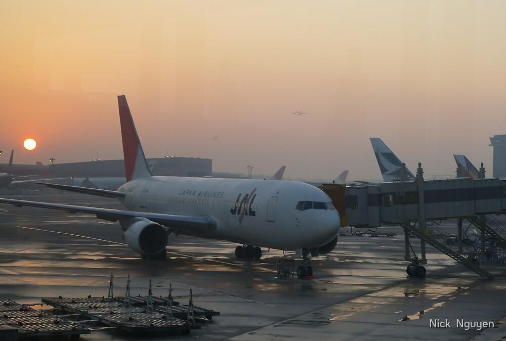 Tokyo - Narita Airport Sunset JAL Boeing - 737 by Nick  Nguyen