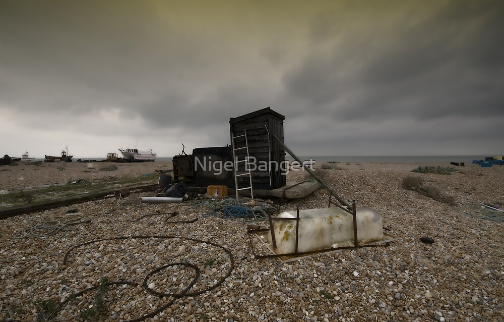 Ordered Chaos by Nigel Bangert