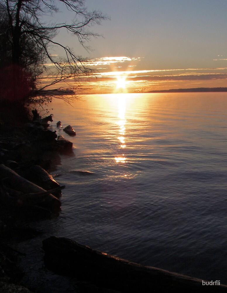 sun marks the spot by budrfli