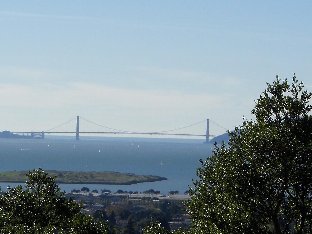 Golden Gate Bridge by Timoteo Delgado
