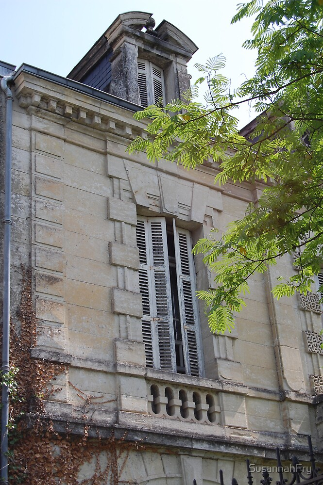 French shutters by SusannahFry