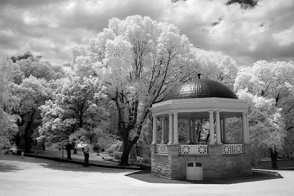 St David's Park by Ian Robertson