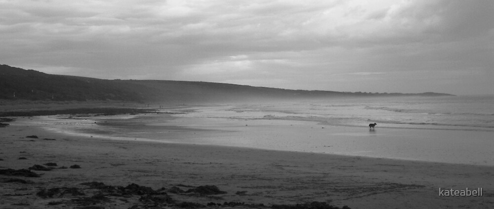 Urquharts Bluff, near Lorne, VIC by kateabell