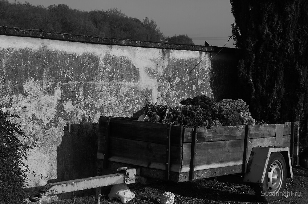 Cart of Wilted Flowers at a Cemetery by SusannahFry