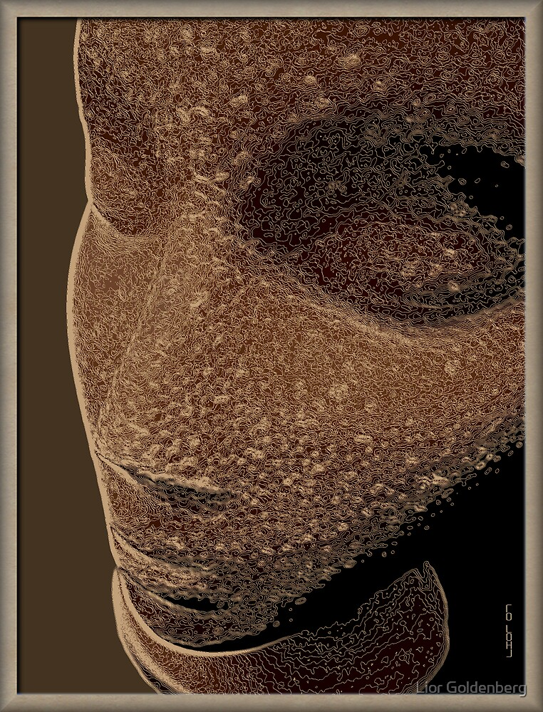 Nefertiti by Lior Goldenberg