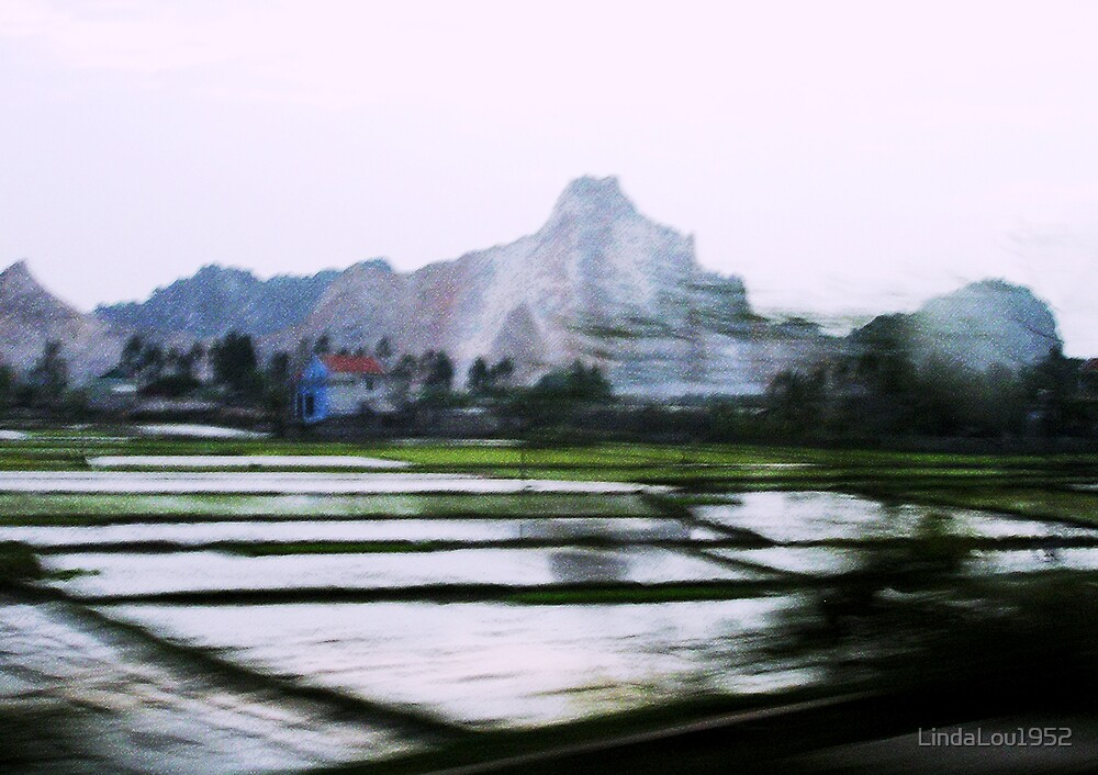 Hanoi Countryside by LindaLou1952