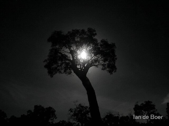 Lonely Moon by Ian de Boer