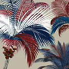 American Palm  by mindydidit