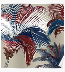 American Palm  Poster