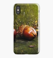Squirrel Food iPhone Case