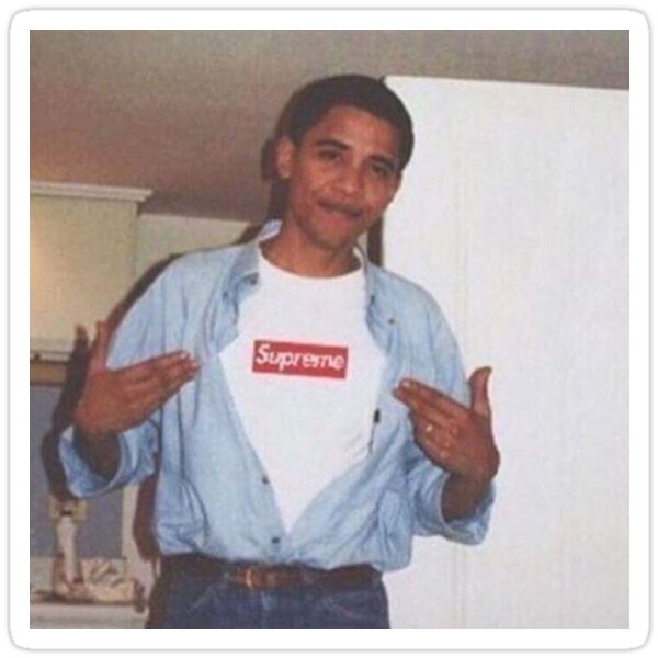 Young Obama Sticker