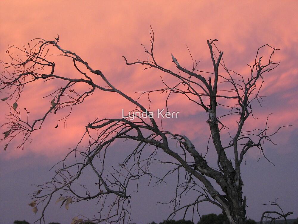 Twilight Tree by Lynda Kerr