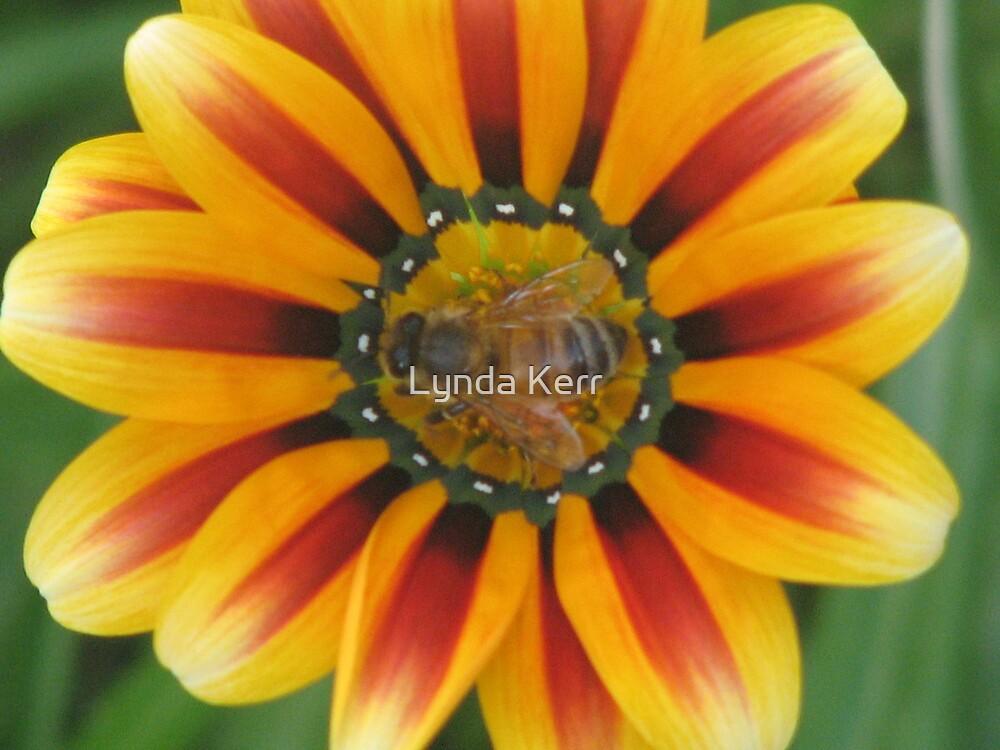 Bee Happy ! by Lynda Kerr