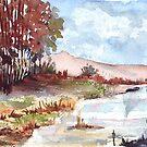 Bluegum bush at the dam by Maree Clarkson
