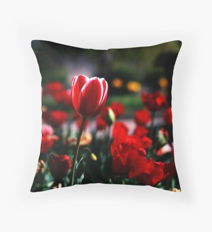 Remember Velvia? Throw Pillow