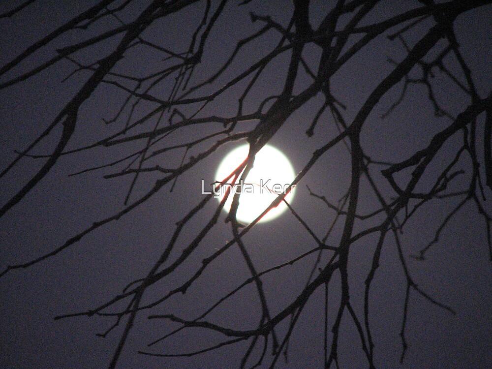 Spooky Moon by Lynda Kerr
