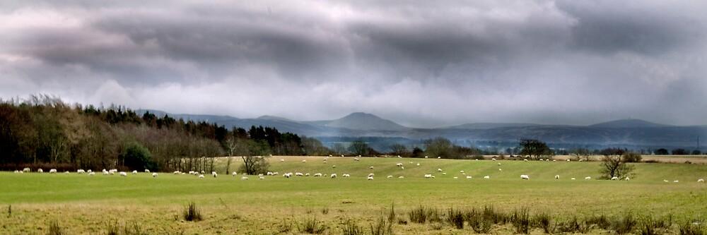 West Lothian Landscape by Chris Clark