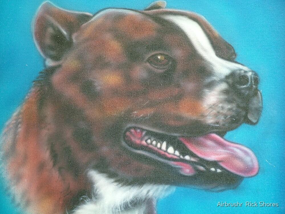pitbull  portrait by Airbrushr  Rick Shores