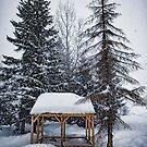 Winter Gazebo by Svetlana Sewell