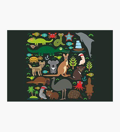 Funny australian animals Photographic Print