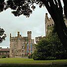 Killkenny Castle by EdgeOfReality