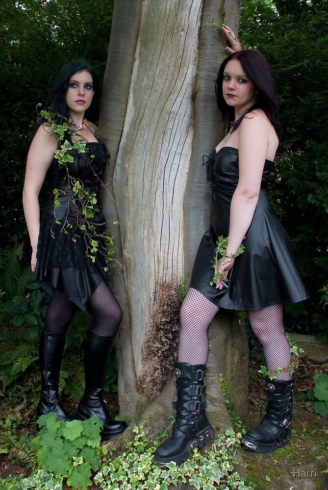 Sirens of the woods by Harri