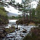 Stream running out of Loch an Eilean by Tom Gomez