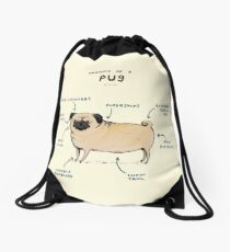 Anatomy of a Pug Drawstring Bag
