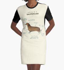 Anatomie eines Dackels T-Shirt Kleid