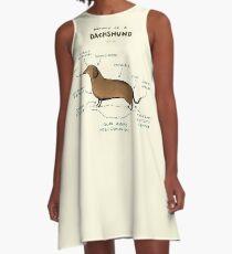 Anatomie eines Dackels A-Linien Kleid