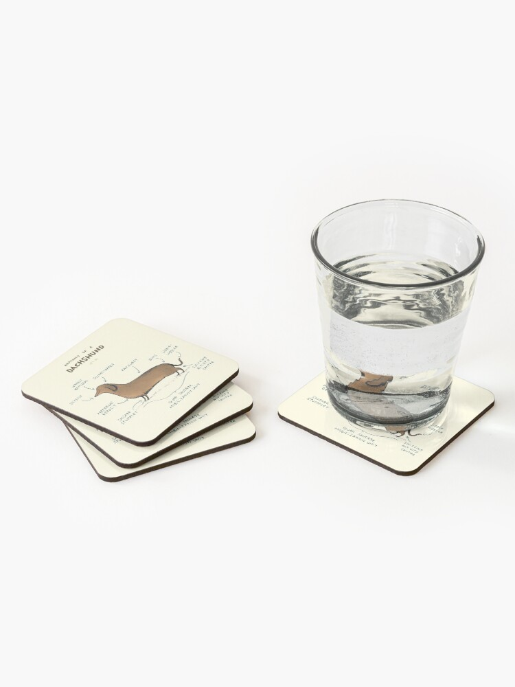 Alternate view of Anatomy of a Dachshund Coasters (Set of 4)
