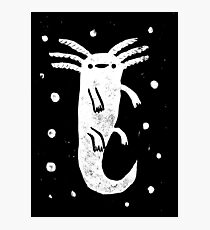 Axolotl Print Photographic Print