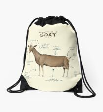 Anatomy of a Goat Drawstring Bag